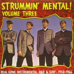 "VV.AA. ""Strummin' Mental! Vol.3"" LP"