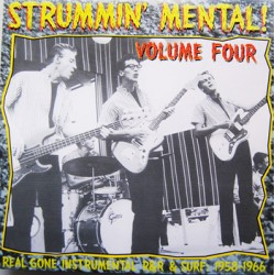 "VV.AA. ""Strummin' Mental! Vol.4"" LP"