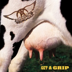 "AEROSMITH ""Get A Grip"" 2LP 180GR."