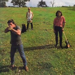 "COSMIC PSYCHOS ""Down On The Farm"" LP."