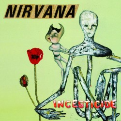 "NIRVANA ""Incesticide"" CD."