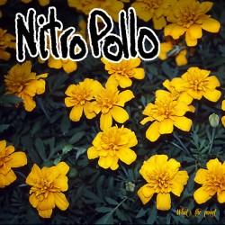 """NITRO POLLO """"What's The Point"""" LP."""