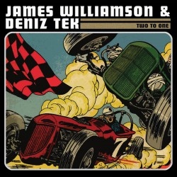 "JAMES WILLIAMSON & DENIZ TEK ""Two To One"" CD."
