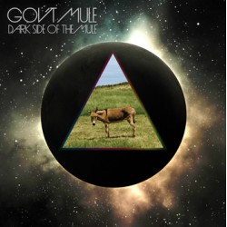 "GOV'T MULE ""Dark Side Of The Mule"" 2LP"