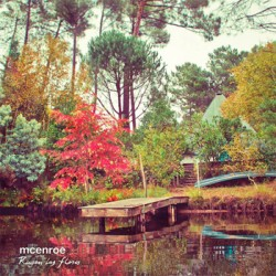 """McENROE """"Rugen Las Flores"""" CD Subterfuge"""
