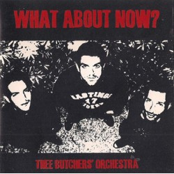 "BUTCHERS' ORCHESTRA ""What About Now?"" CD"