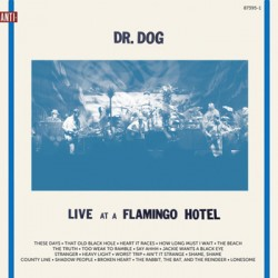 "DR. DOG ""Live At A Flamingo Hotel"" 2LP"