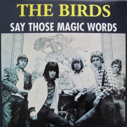 "BIRDS ""Say Those Magic Words"" LP (con Ron Wood)."