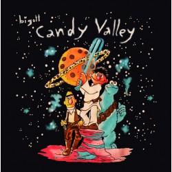 """BIGOTT """"Candy Valley"""" LP."""