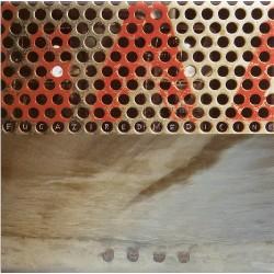 "FUGAZI ""Red Medicine"" LP."