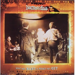 """BARRACUDAS """"What You Want Is What You Get"""" SG 7""""."""