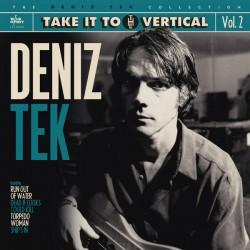 "DENIZ TEK ""Take It To The Vertical"" LP."