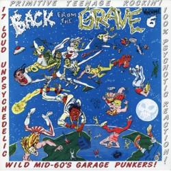 """VV.AA. """"Back From The Grave Vol. 6"""" LP Crypt"""