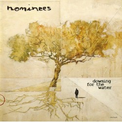 """NOMINEES """"Dowsing For The Water"""" CD Rock Indiana"""